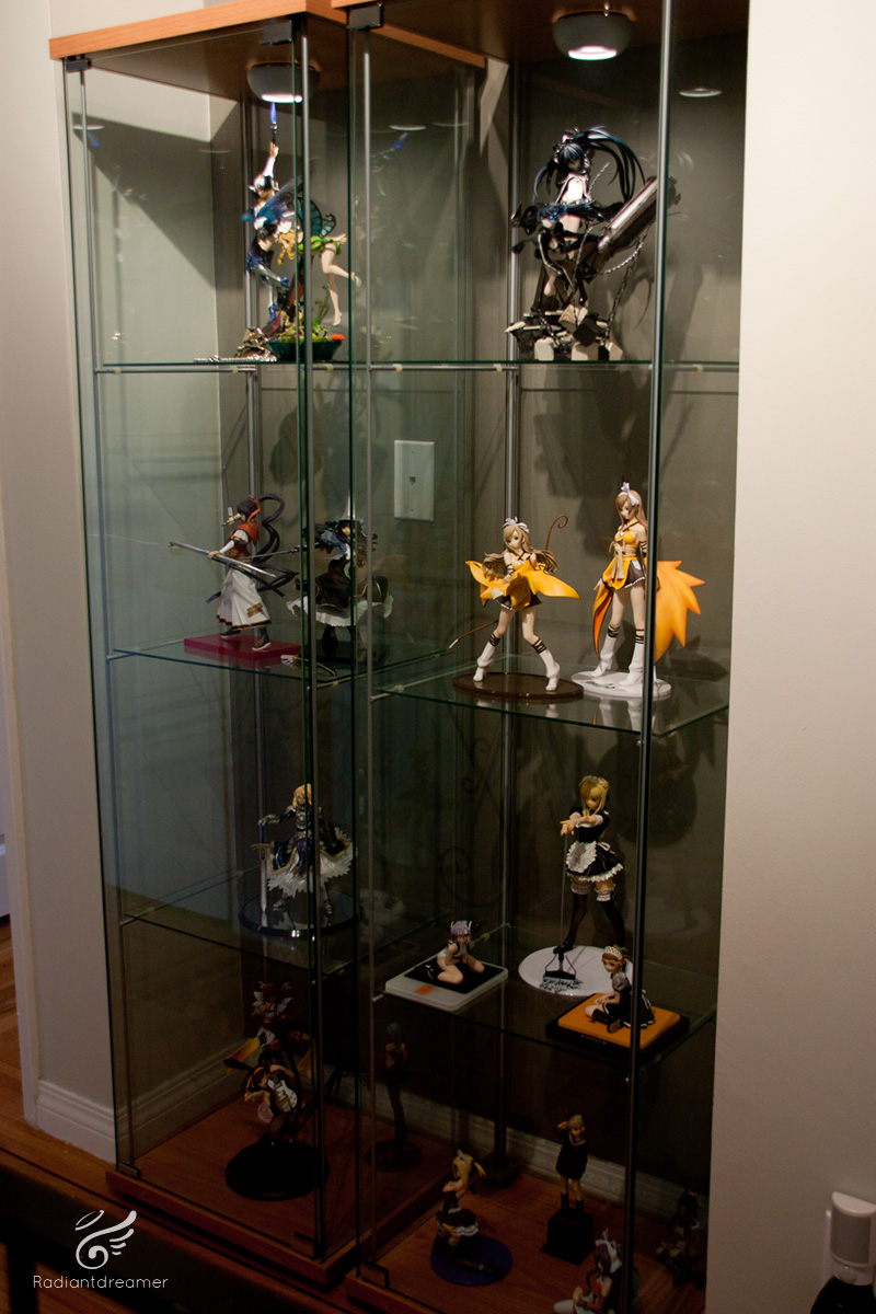 My Current 2011 January Collection