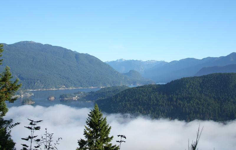 Beautiful fog